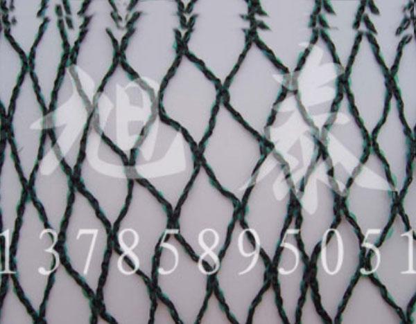 果园防鸟网价格