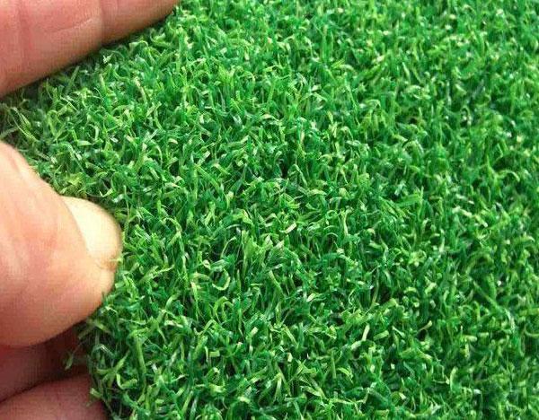 球场人工草坪