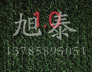 草坪网价格